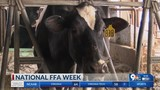 National FFA week brings to light the decline in youth agriculture involvement
